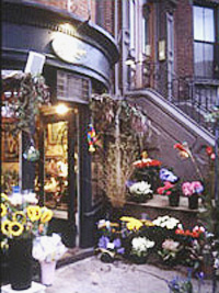 flowershop and rowhouse/townhouse in Beacon Hill Boston MA