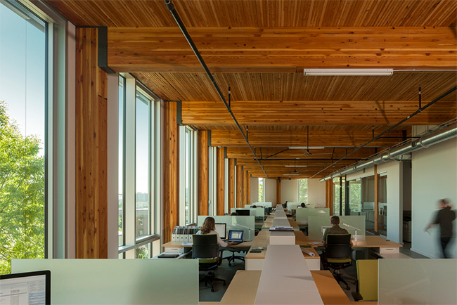 Open office spaces in the Bullitt Center