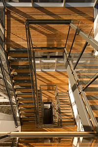 Wooden staircase in the Bullitt Center