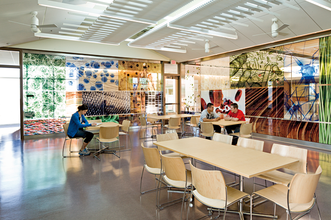 Chemeketa Community College Health Sciences Complex, Active Learning Center's vibrant imagery