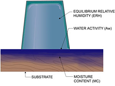 Illustration of moisture requirements for mold growth--moisture content of a substrate, water activity of a surface, and equilibrium relative humidity