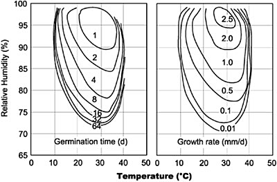 Isopleths of mold germination and growth rate