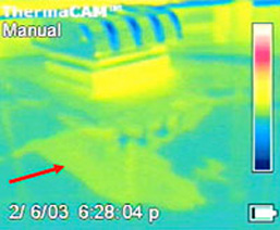 Photo 12 of infrared thermography photo