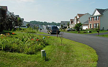 Photo of bioretention cells in Somerset Community