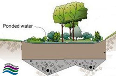 A diagram showing open space being used for storm water control via a Bioretention Cell