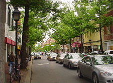 Photo displaying tree lined street with historical character