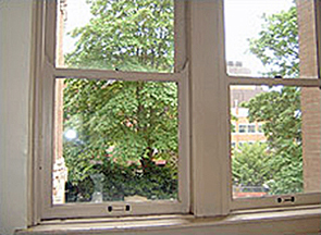 Photo of 2 windows looking out to the trees in daylight.